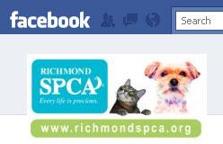 Facebook-+-spca
