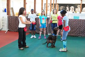 Junior Dog Trainers July 4