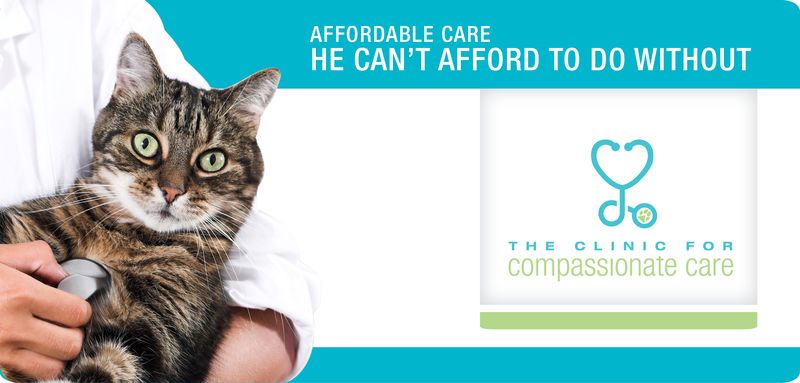 3930-03_Web Banners_560x268_r3_cat