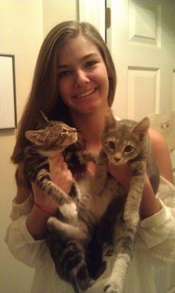 Alexa's fall foster kitten duo