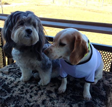 Lottie and Rosie at Cooper