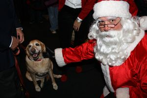 Belle, the Richmond SPCA's 2013-2014 Mascot, joined Santa at The Jefferson Hotel's annual tree lighting event earlier this week.