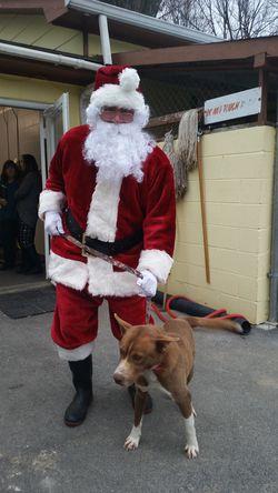 Tazewell Santa 1