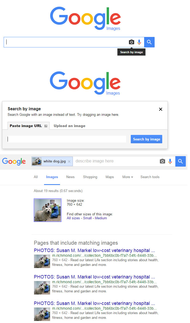 Image-search-example