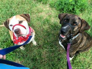 Lenora & Snoopy