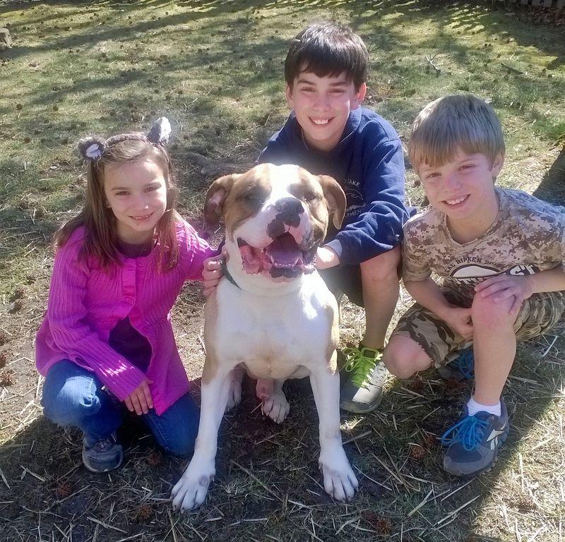 Petrie - Tucker family - crop