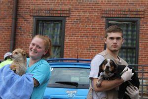 Tazewell dogs 4&5 alt