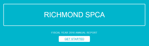 Annual Report - get started